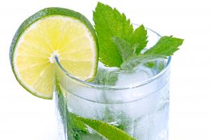 Sodawasser mit Limette Getränke Friesacher